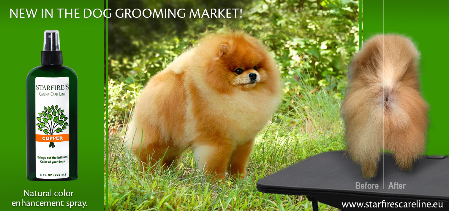 New In The Dog Grooming Market