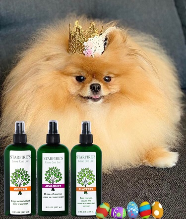 Royal Easter At Starfire S Canine Care