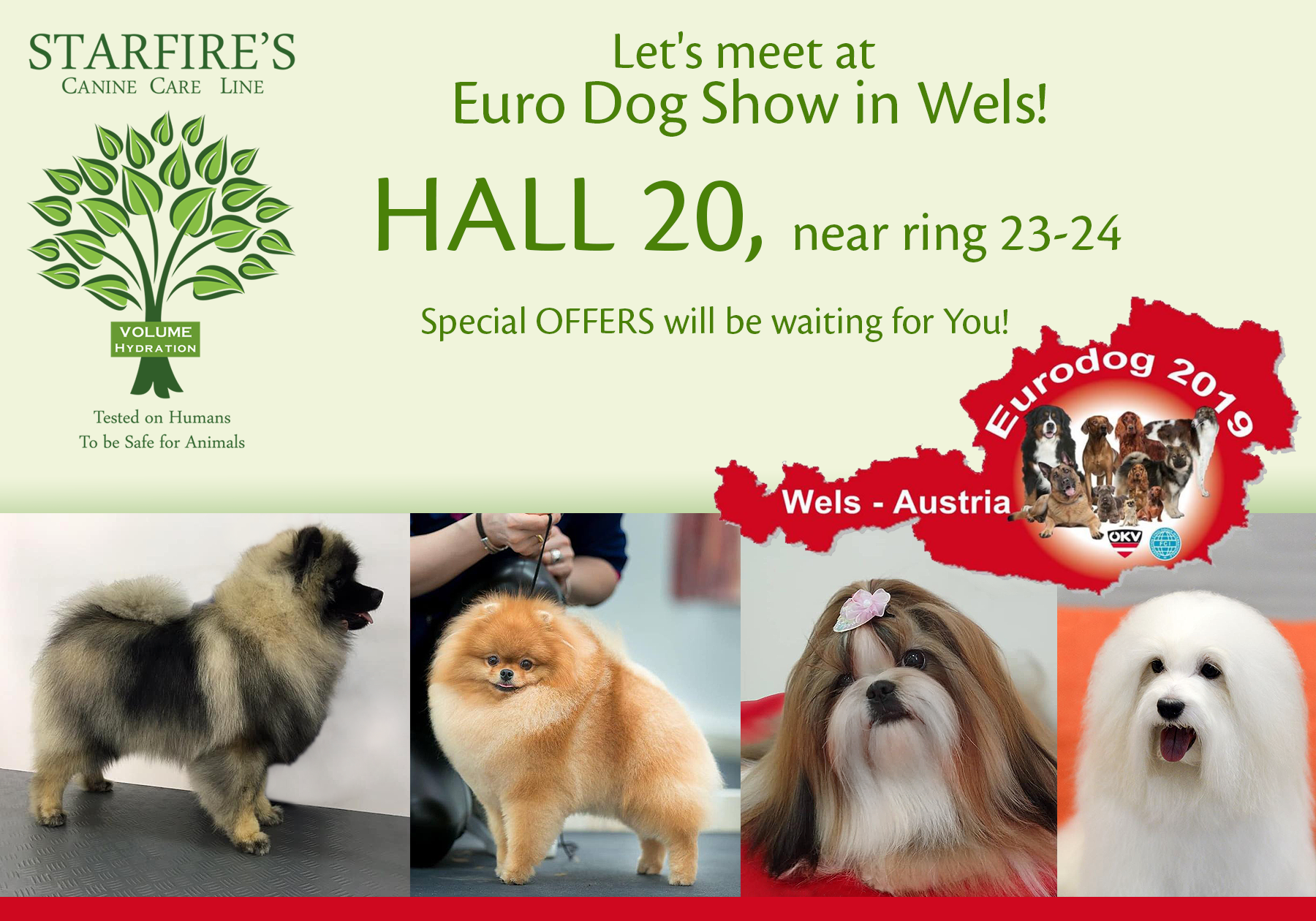 Meet us in European Dog Show- Wels! - Starfire's canine care